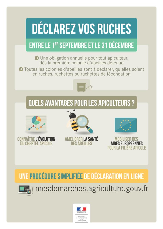 Déclaration obligatoire des ruchers jusqu'au 31/12/2020, sur mesdemarches.agriculture.gouv.fr