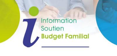 2020 udaf service information budget