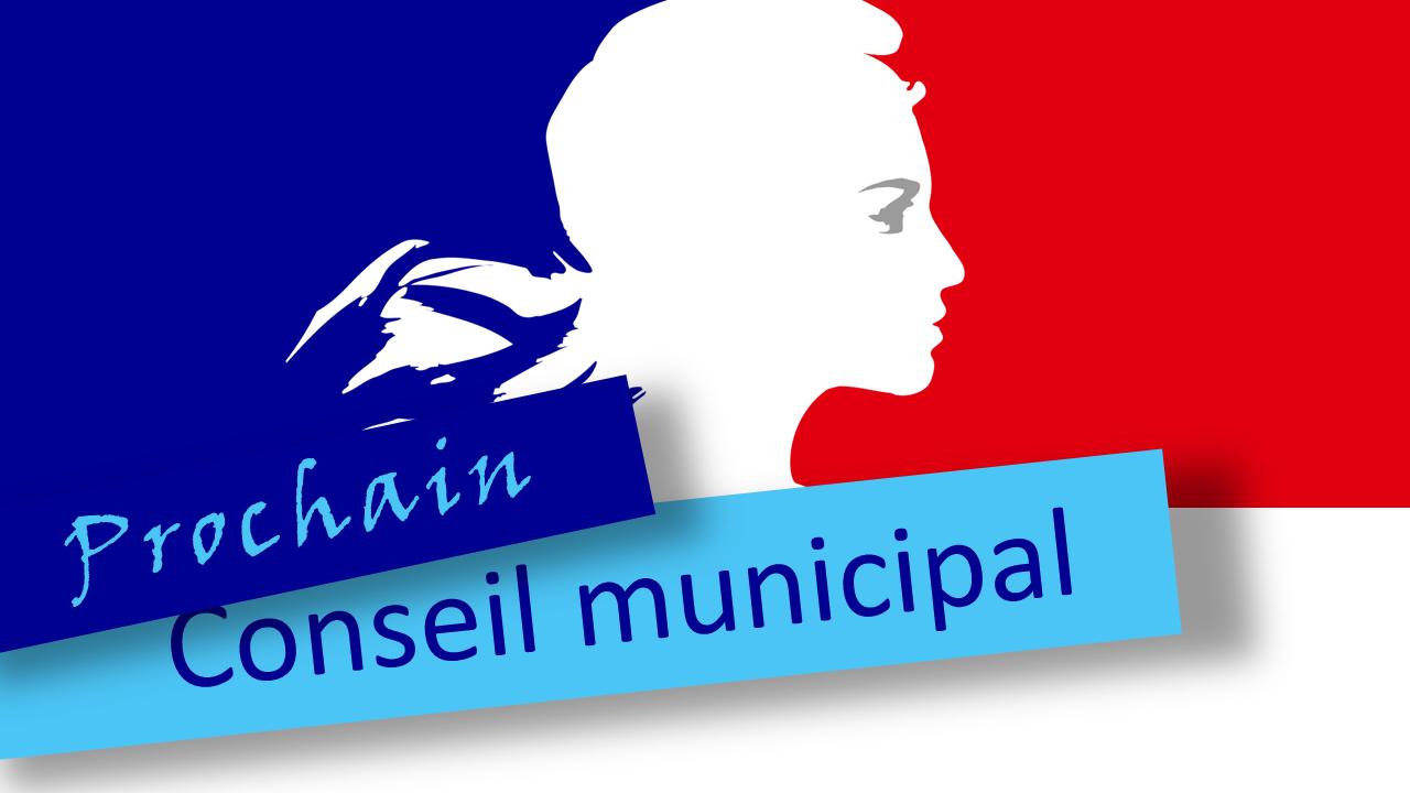 Conseil municipal 15 juin 2021