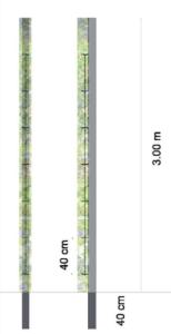 Schéma tuteurs pour plantes grimpantes. Source : Atelier Lieu Dit.